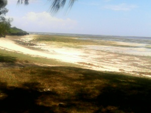 Oceanfront Malindi Cottage, Ocean front property to let in Malindi Kenya