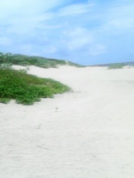 Beach Plot for Sale in Mambrui, Real Estate investment opportunity in Kenya North Coast