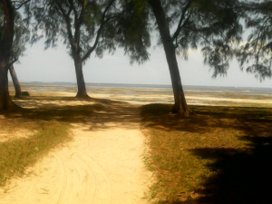 Oceanfront Malindi Cottage, The Beach Front property to let in Malindi