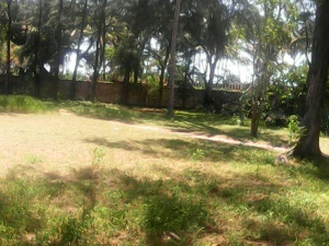 Oceanfront Malindi Cottage, The garden for malindi real estate to rent