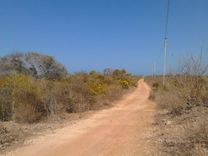 Malindi Land for Sale in Mayungu, Malindi Plot of Land for Sale in Kenya North Coast