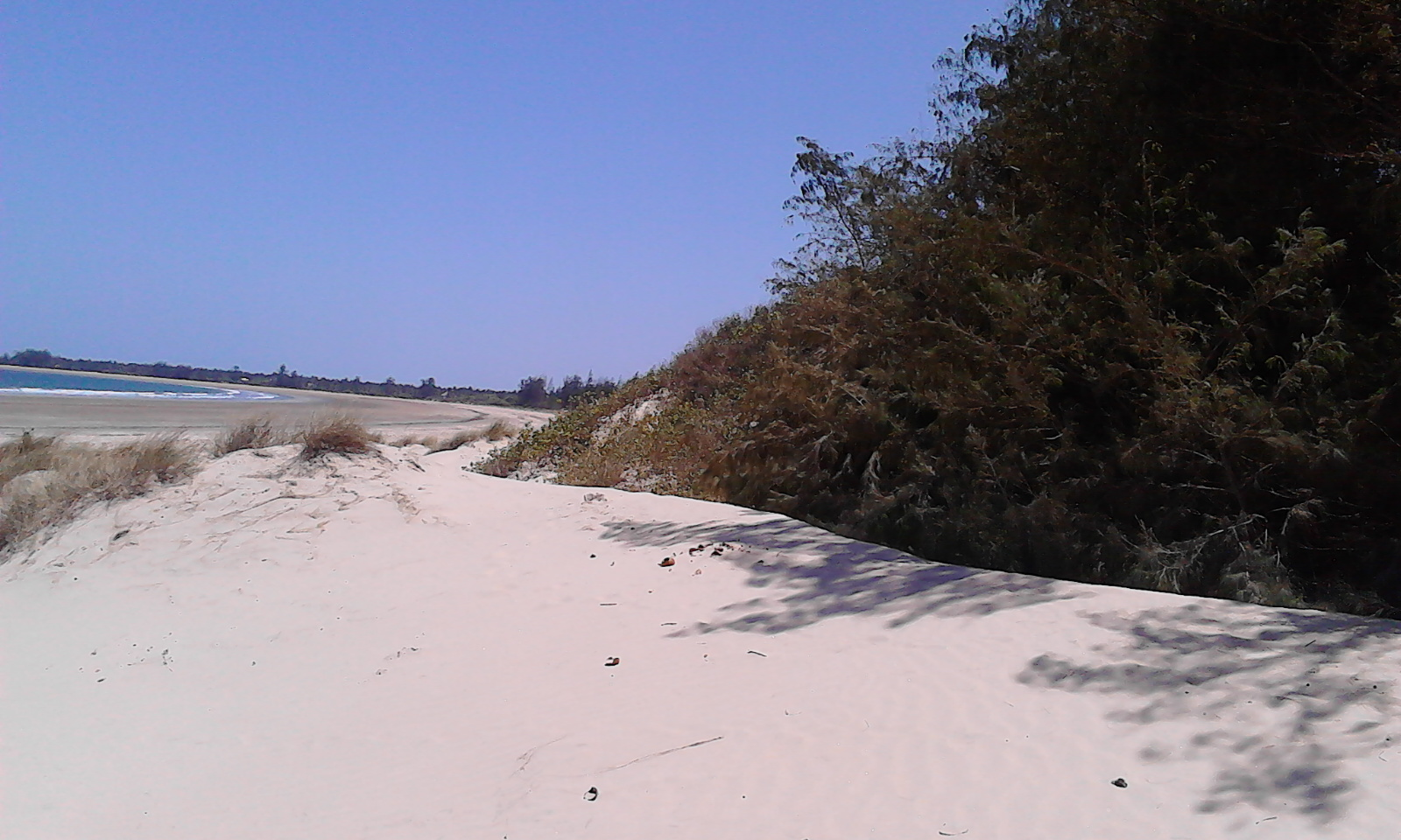 4 Acres Oceanfront property for sale in Ngomeni Malindi