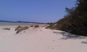 4 Acres Oceanfront property for sale in Ngomeni Malindi