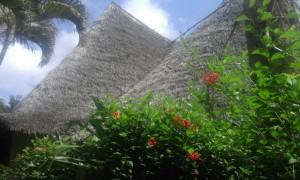 Furnished Cottages in Malindi for sale, Affordable Cottages in Malindi for sale
