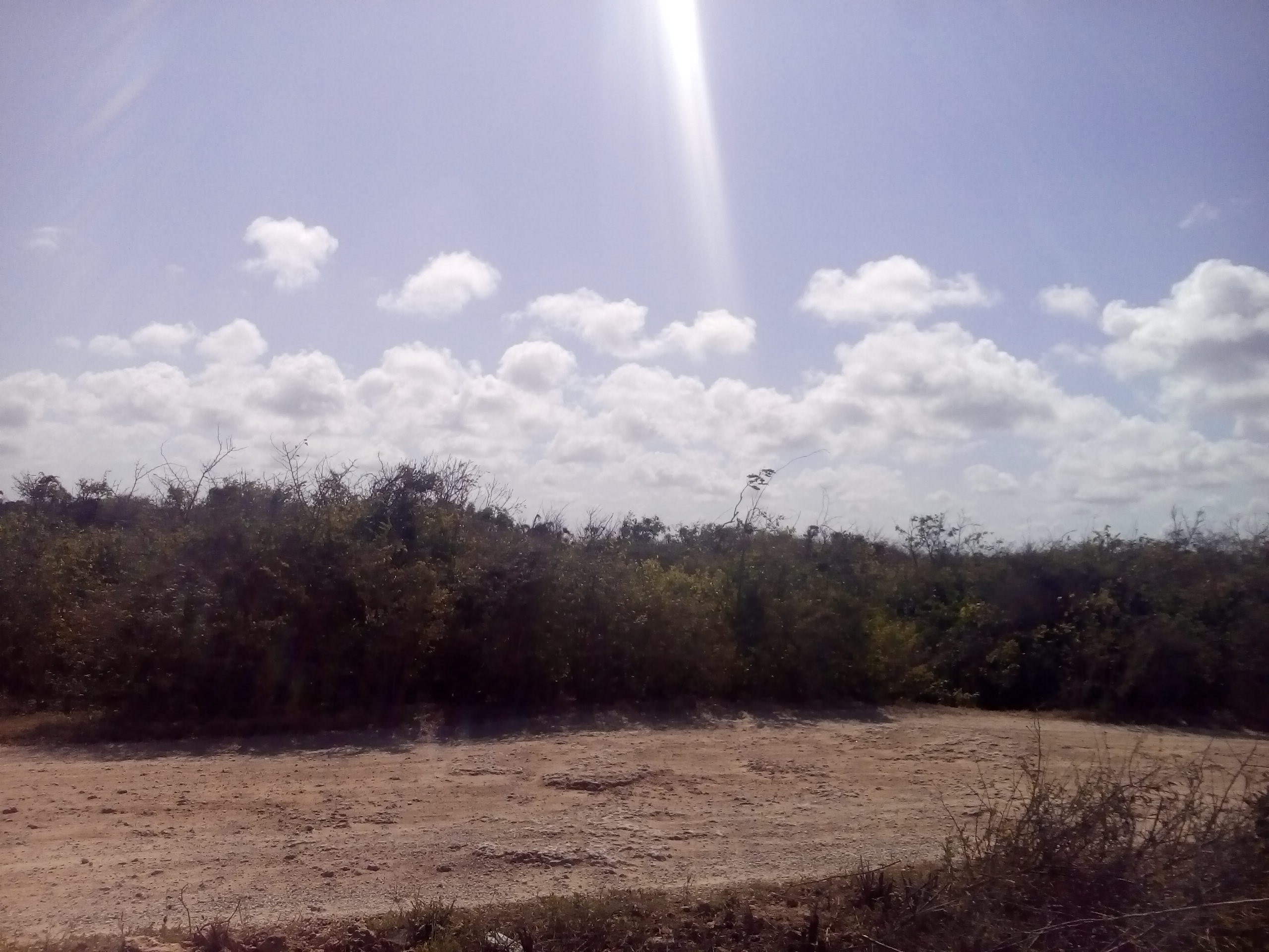12 Acres Land for Sale in Malindi