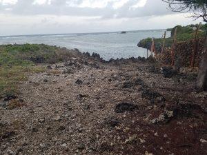 Oceanfront property for sale in Watamu