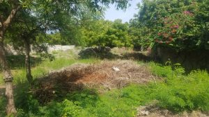 0.38Acre Plot for sale in Casuarina Malindi